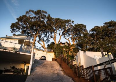 Tree Removal in Progress in Takapuna.
